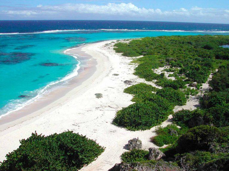 Antigua-Great-Bird-Island