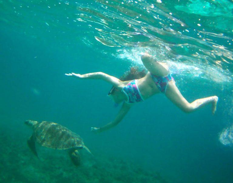 nager-avec-les-tortues-dans-la-reserve-naturelle-de-petite-terre